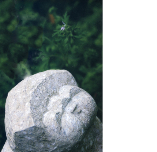 Exhibition in Paris of stone sculputure by Matsuzaki Katsuyoshi